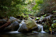 Thumbnail: Whiskeytown National Recreation Area - Waterfall #2